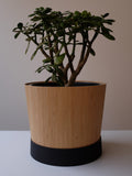 Bamboo Pot Plant Skin - XL (10 inch) - Free shipping in AUS
