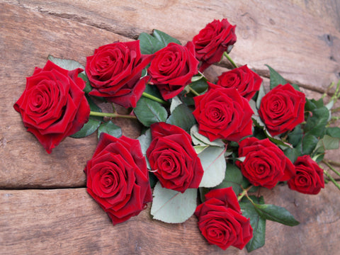 The Best Long Stemmed Red Roses