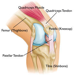Kneecap pain and patella tendon pain relief