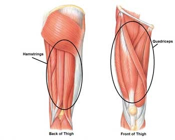 Hamstring and quadricep pain relief from an Active650 Thigh Support