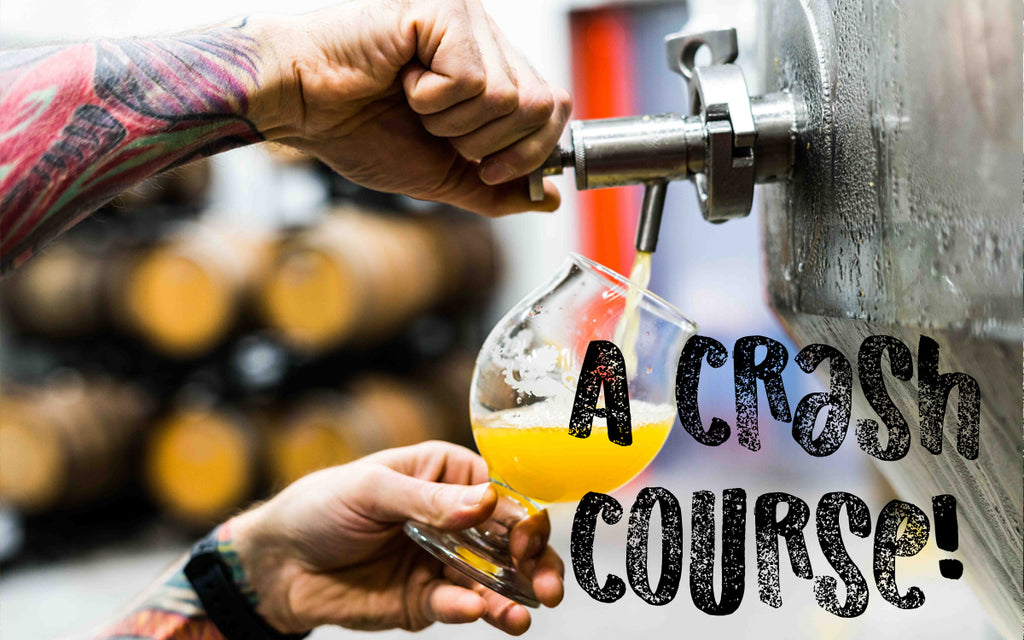 Craft Beer Crash Course