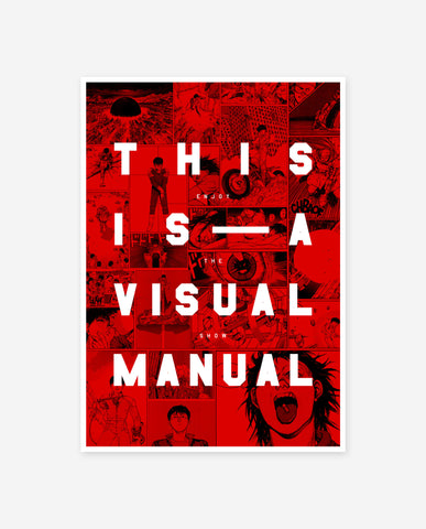 THIS IS A VISUAL MANUAL Print - Museum Of Youth Poster