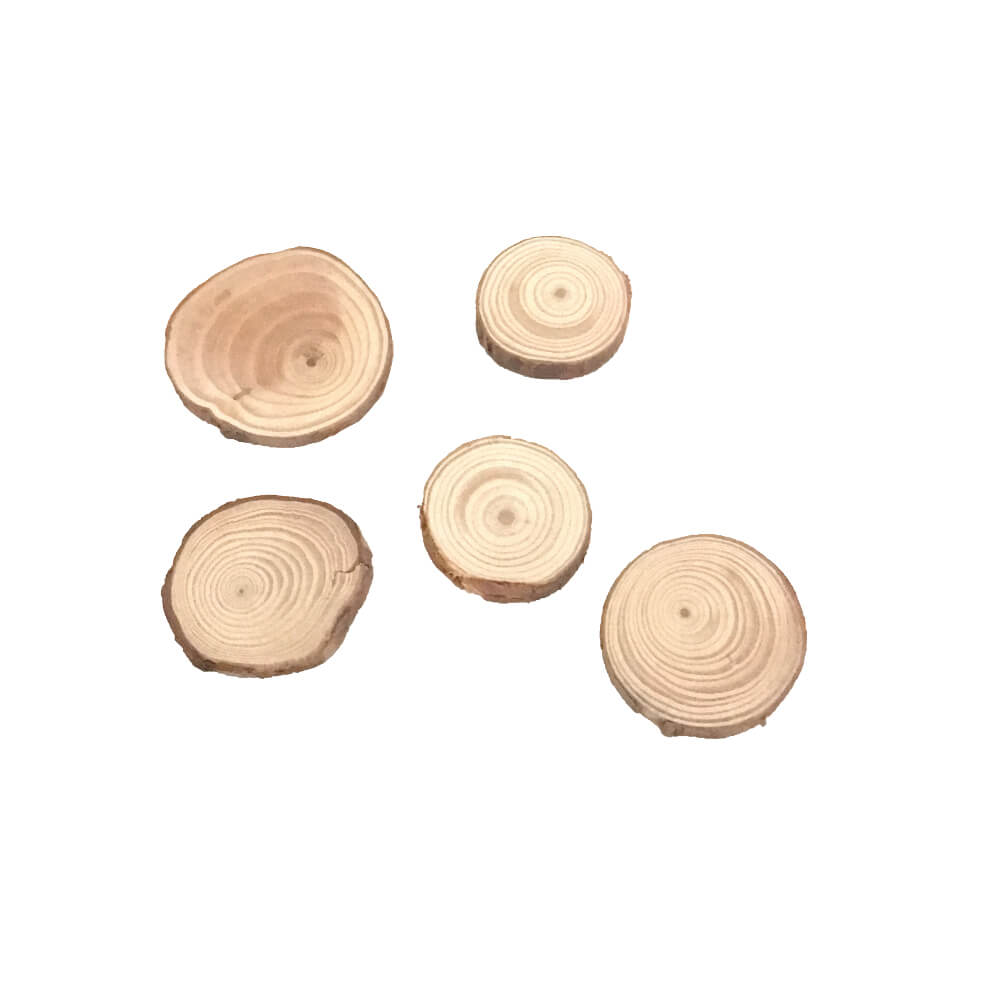 Miniature Rings of Wood - Pk of 5