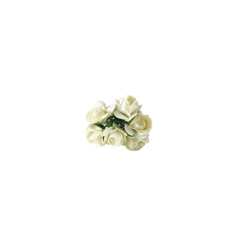 Long Stem Roses | White
