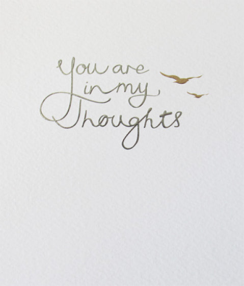 Mimosa You are In My Thoughts Card