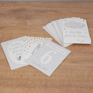 Bambino Baby's Firsts Milestone Cards