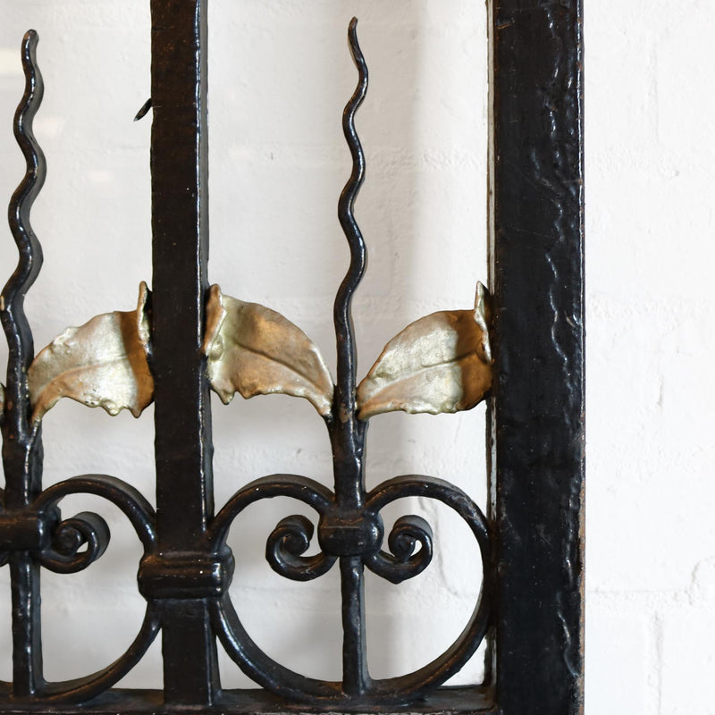 wrought iron gate and doors