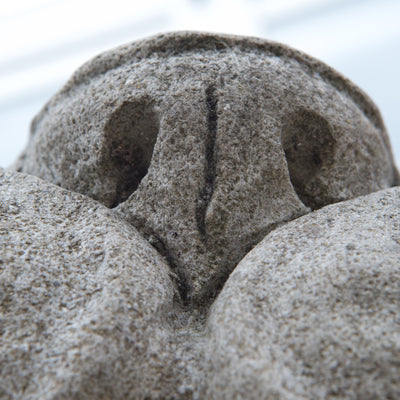 Reclaimed Pair of Monumental Stone Lions on their own Plinth - architectural-forum