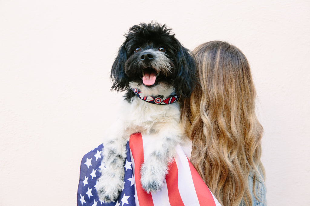 Preparing your Dogs for Fireworks