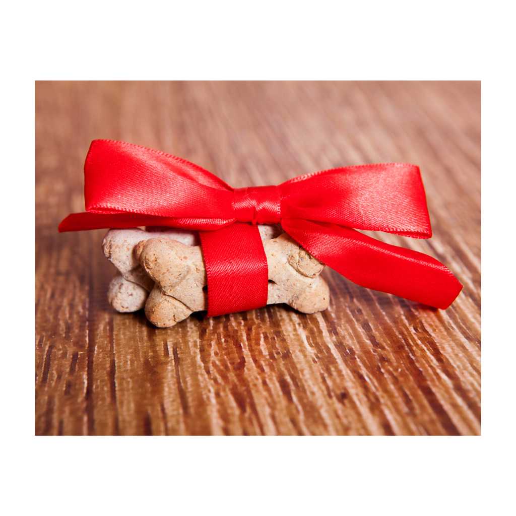 Favorite Holiday Dog Treat Recipes