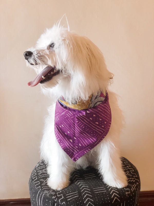 LAVENDER DREAMS REVERSIBLE TRIANGLE DOG BANDANA