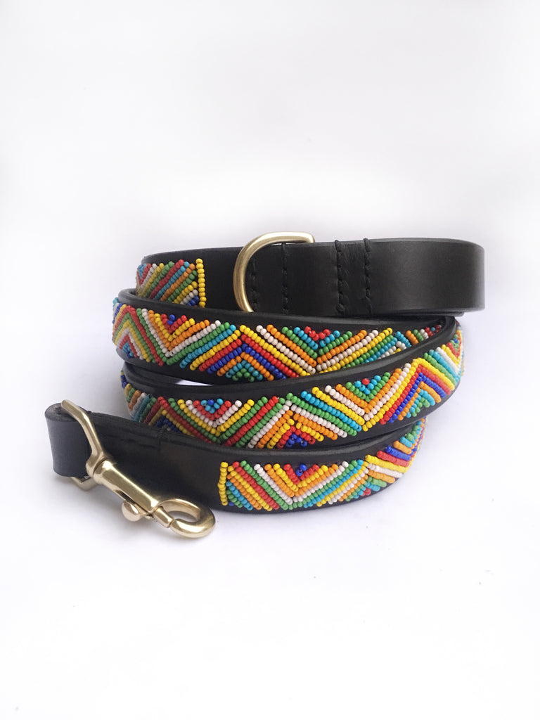 COACHELLA DOG COLLAR & LEASH SET