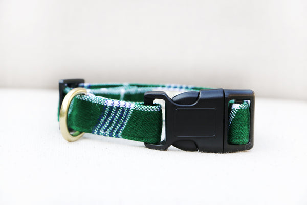 EVERGREEN BUCKLE RELEASE COLLAR