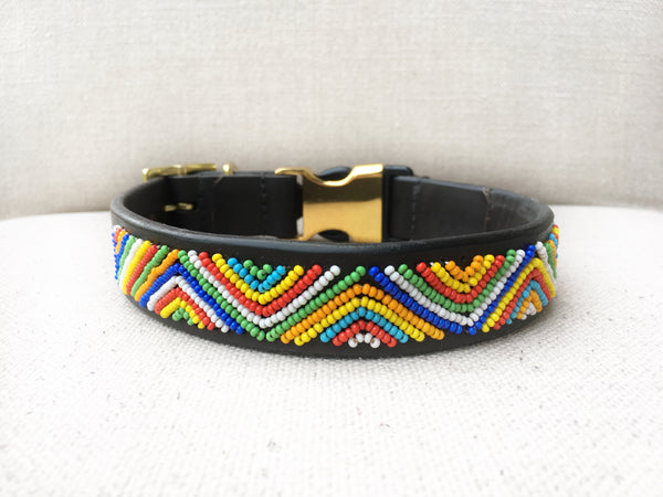 COACHELLA STYLE-RELEASE DOG COLLAR