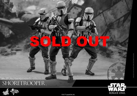 Hot Toys Shoretrooper Star Wars Rogue One