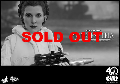 HOT TOYS STAR WARS: THE EMPIRE STRIKES BACK PRINCESS LEIA
