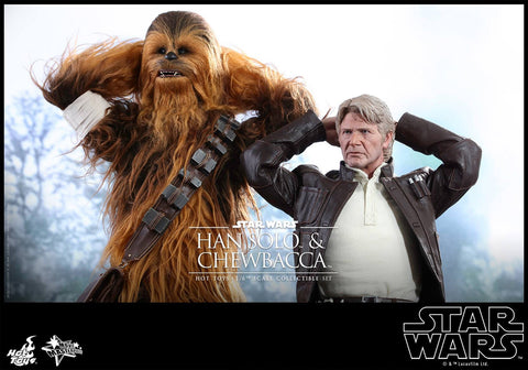 Hot toys Han Solo and Chewbacca Set TFA