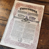 Concordia (pink) - Vintage share certificate - 1924