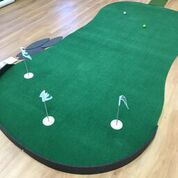 Big Moss Golf General Indoor Putting Green