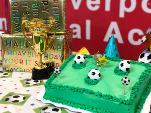 Soccer Birthday Party Britannia Soccer Park