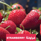 https://www.plantnmore.com/collections/strawberry