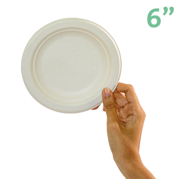 Sugarcane Small Round Plate • 20 pieces - plantnmore