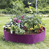 Purple Raised Bed 100 gallon ●  حوض ريزد بد ١٠٠ غالون