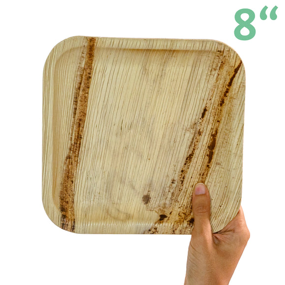 Areca Medium Square Plates • 5 pieces - plantnmore