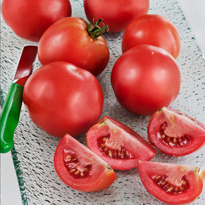 Tomato Early Girl Hybrid • طماط ينضج مبكرا - plantnmore
