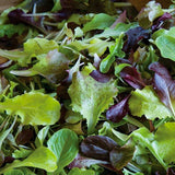 Lettuce Gourmet Salad Mix  • خس ملون فاخر