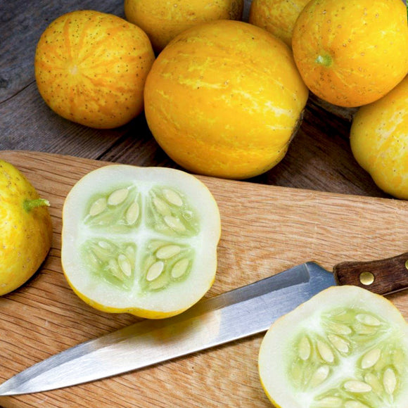 Cucumber Lemon • خيار ليموني