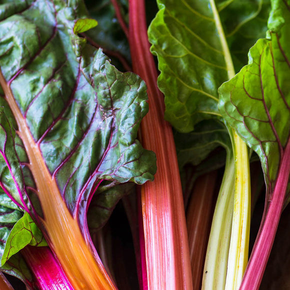 Swiss Chard Rainbow • سلق ملون