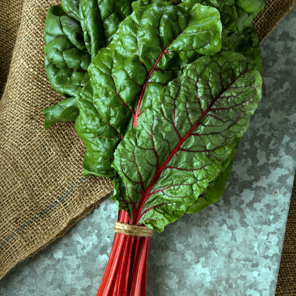 Swiss Chard Ruby Red• سلق احمر فاقع - plantnmore