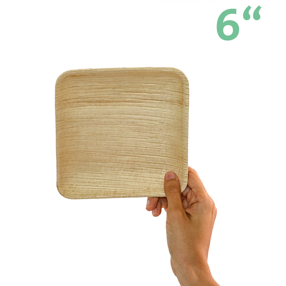 Areca Small Square Plates • 5 pieces - plantnmore