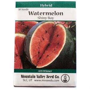 Watermelon Shiny Boy Hybrid • بطيخ احمر لامع
