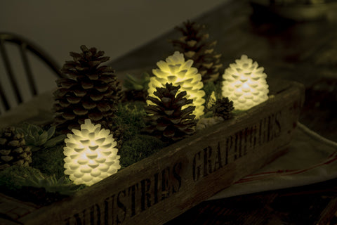Real Wax Pine Cone, White (3 sizes)