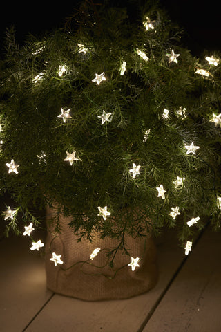 Star LED String, 40 LEDs, 3.9m