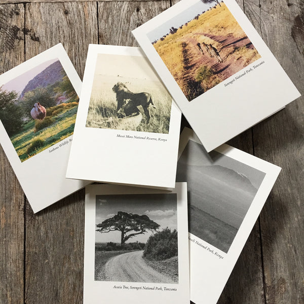 HH Exclusive Boxed Set of 5 Cards - Safari Collection