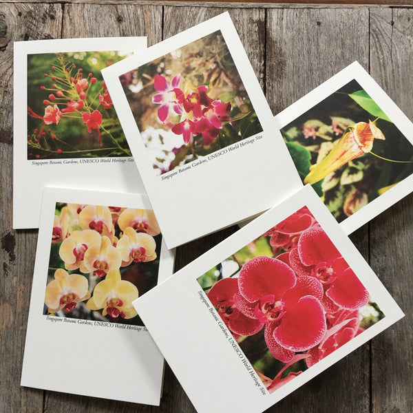 HH Exclusive Boxed Set of 5 Cards - Botanical Collection