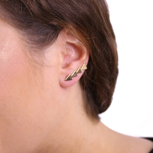 Direct Flight Earrings