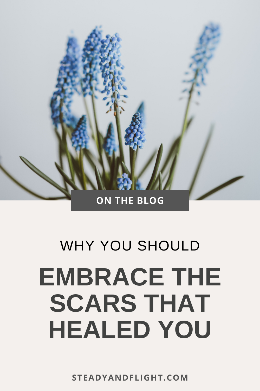 Why you should embrace the scars that healed you.