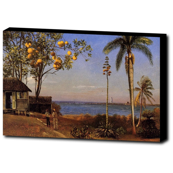 Premium Canvas Gallery Wrap - A View In The Bahamas By Albert Bierstadt