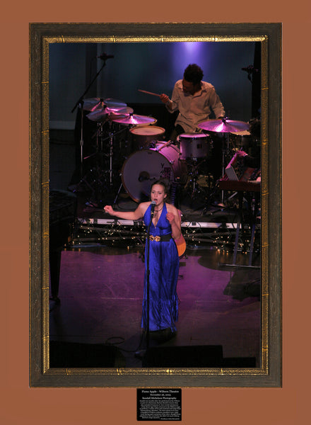 Fiona Apple Live at the Wiltern Theater Los Angeles Photograph