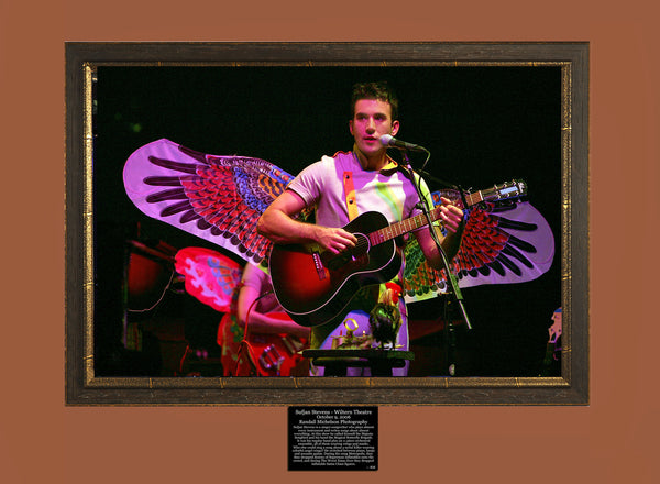 Sufjan Stevens at the Wiltern Theater Los Angeles Photograph