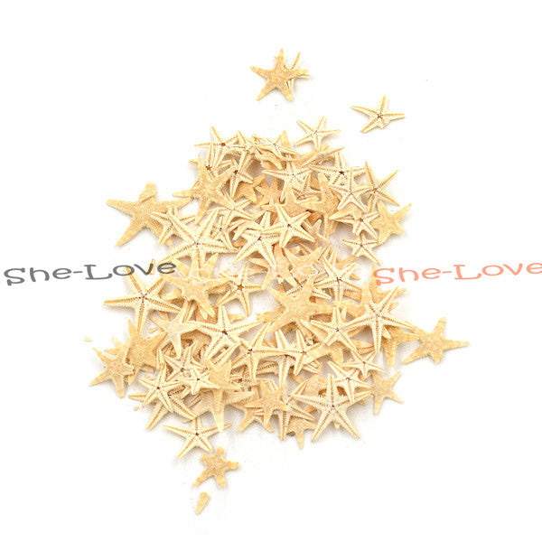 100pcs 0.5-1.5cm Mini Starfish Craft Decoration Natural Sea Stars DIY Beach Cottage Wedding Decor