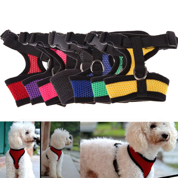 Fashion Dog Vest with a Soft Air Nylon Mesh Harness