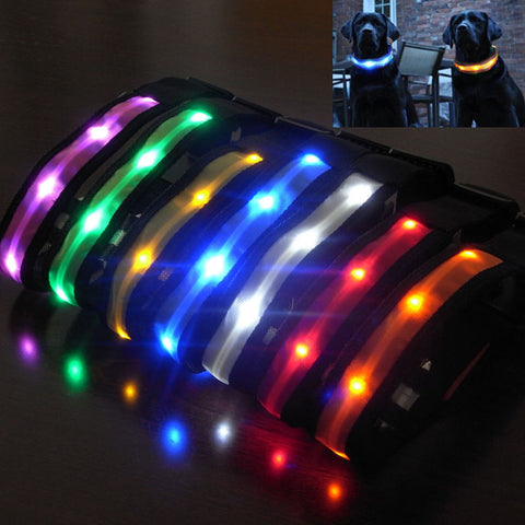 LED Pet Collar w/ Night Safety Glow