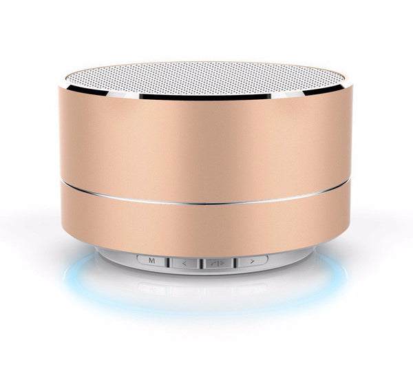 Metal Portable Wireless Bluetooth Speaker with Microphone