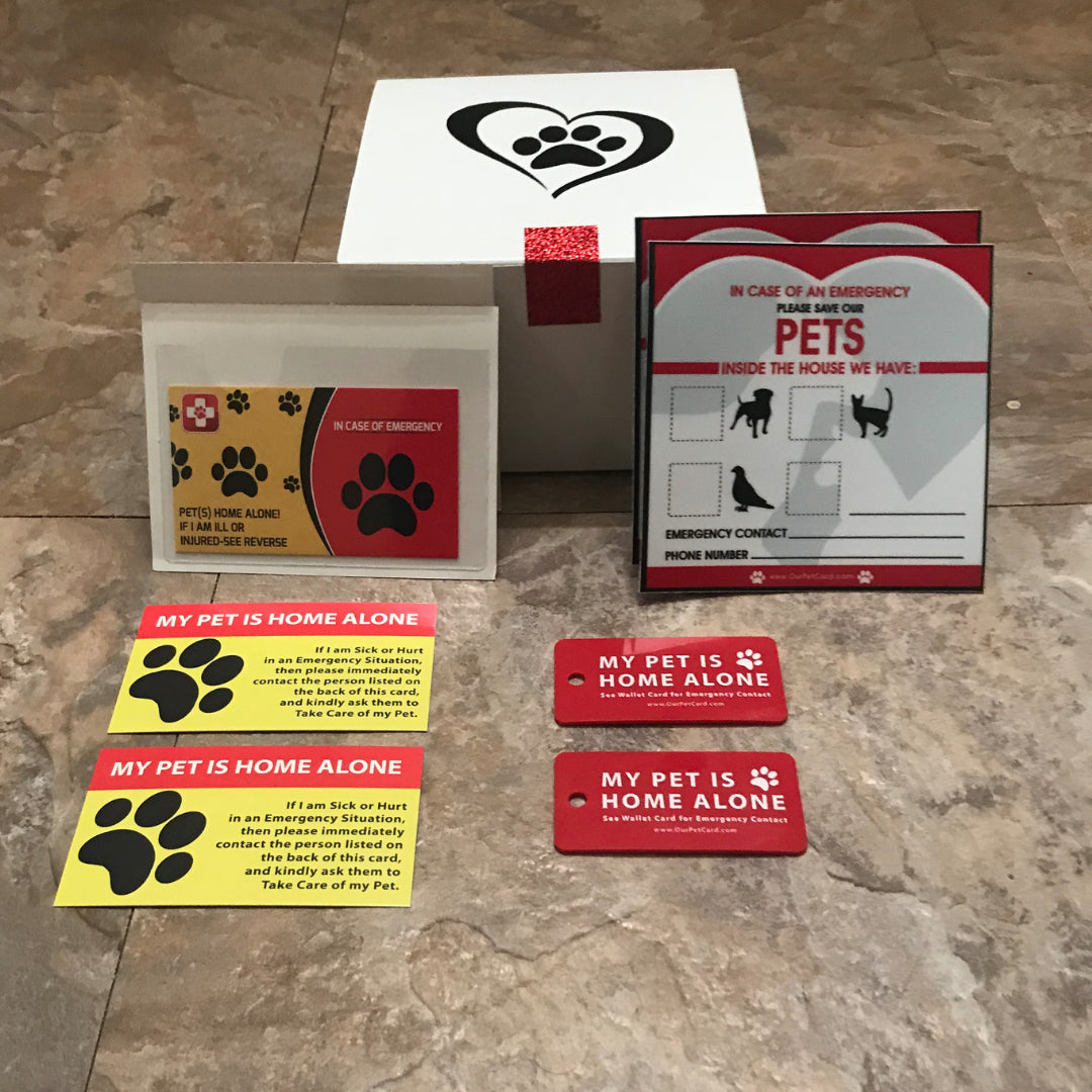 image about My Dog is Home Alone Card Printable referred to as Pet dog Treatment Reward Box for Animals - Our Dog Card