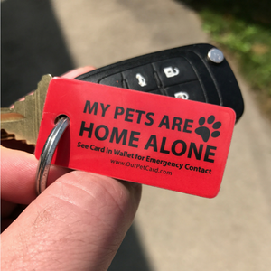 Emergency Key Tag for Pets - Our Pet Card